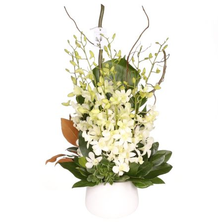 white cut flower orchid arrangement